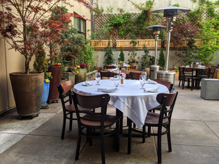 It's springtime in our courtyard